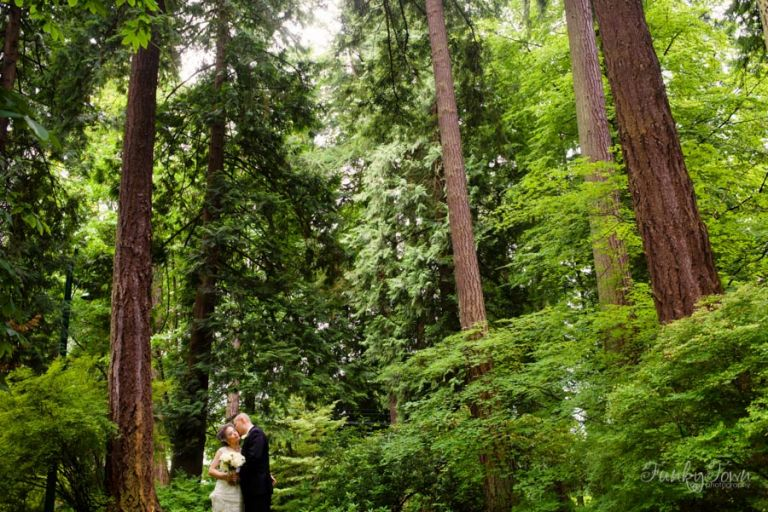 Wedding Portrait in the forest at Stanley Park - Wedding Photography Vancouver