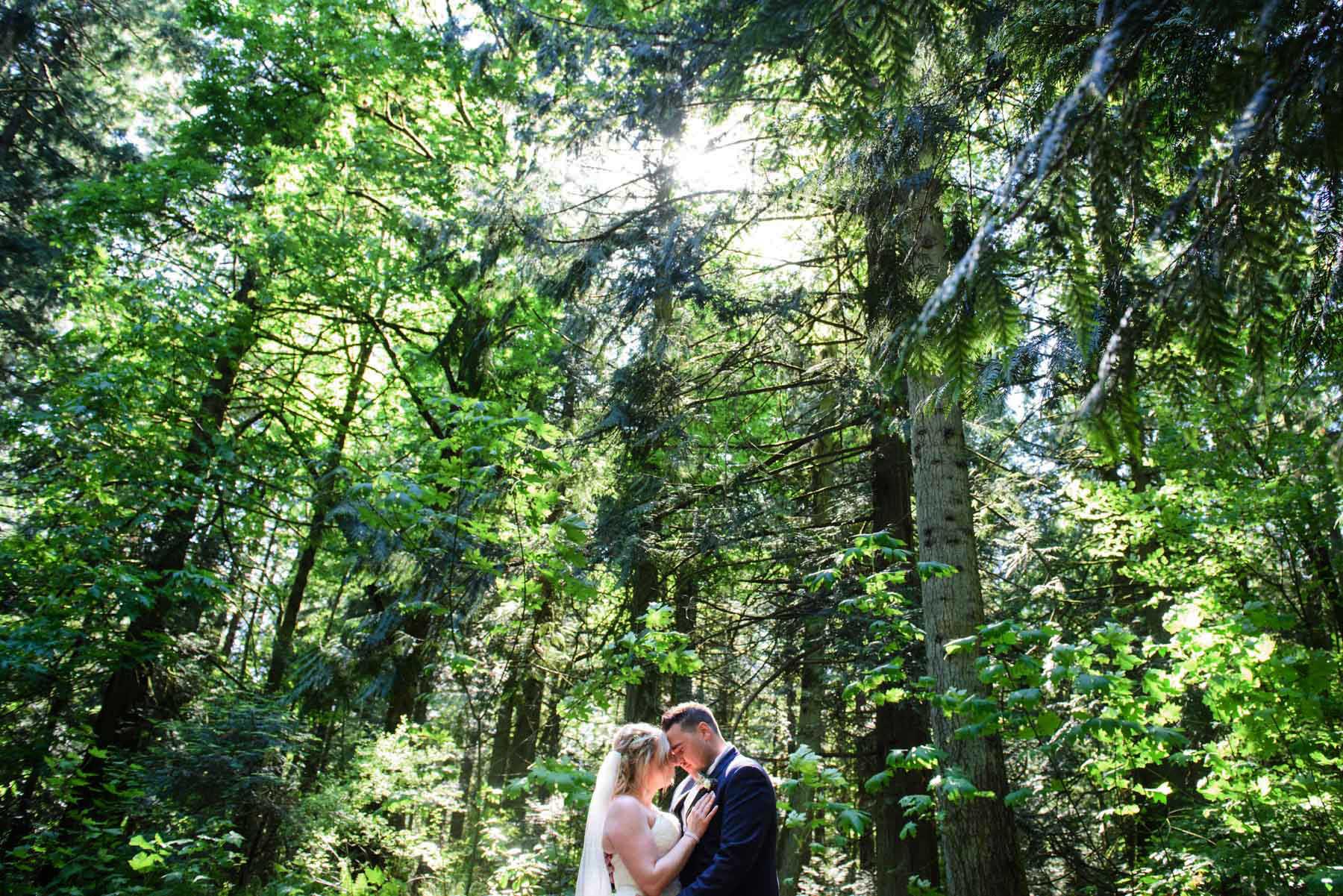 Centennial Park Victoria Wedding Photography